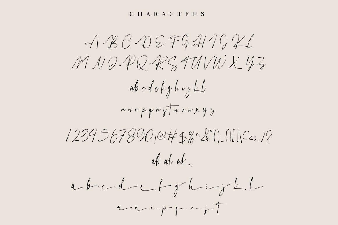 Austhedik Modern Signature Font -3