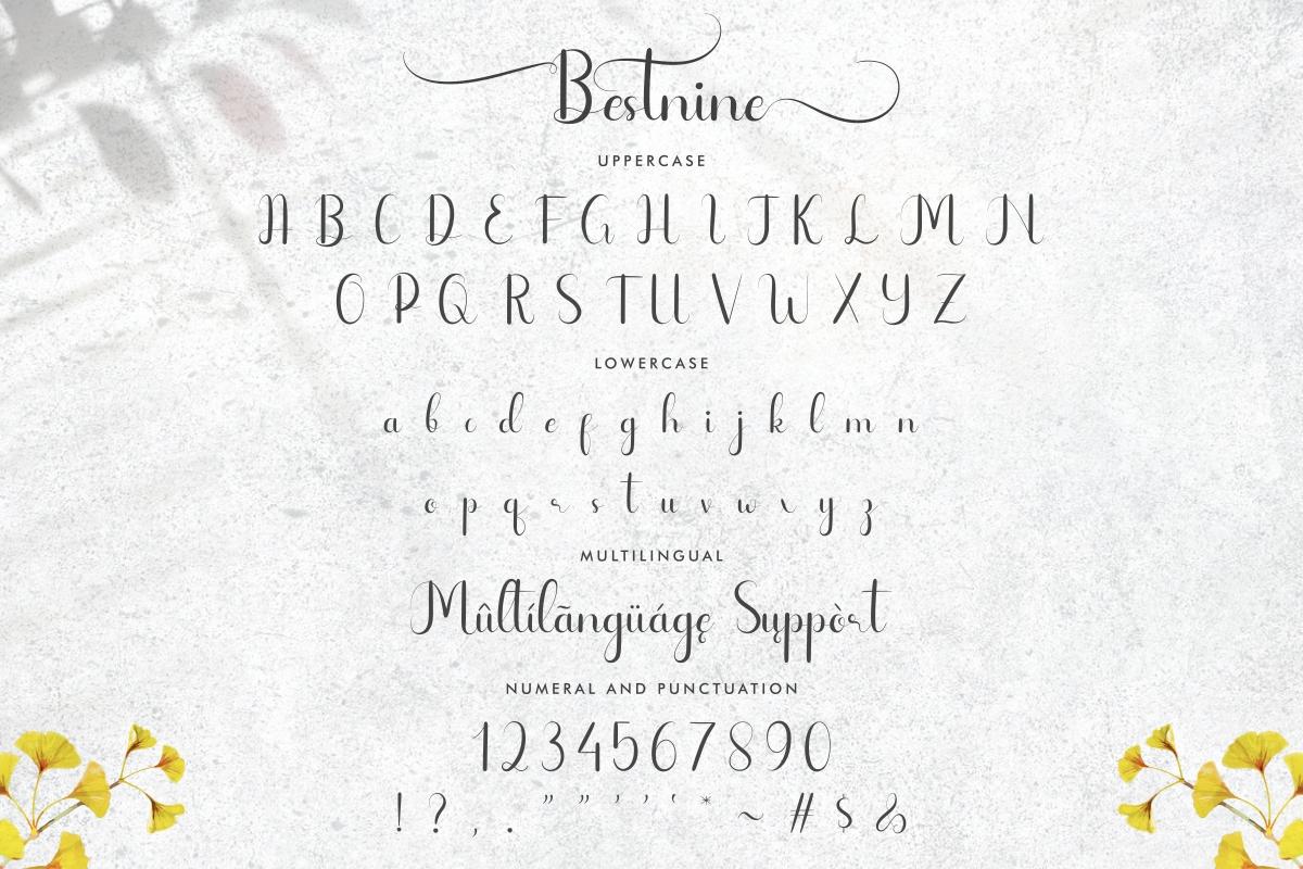 Bestnine Calligraphy Script Font -3