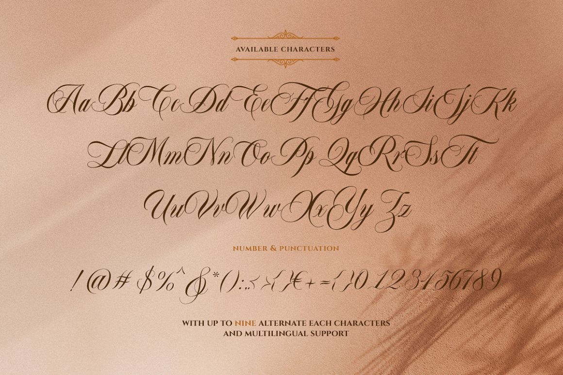 Bordemile Luxury Script Font -3