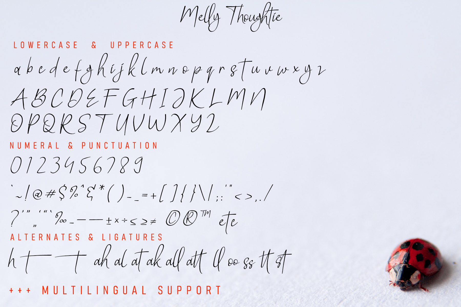 Melly Thoughtie Handwritten Font -3