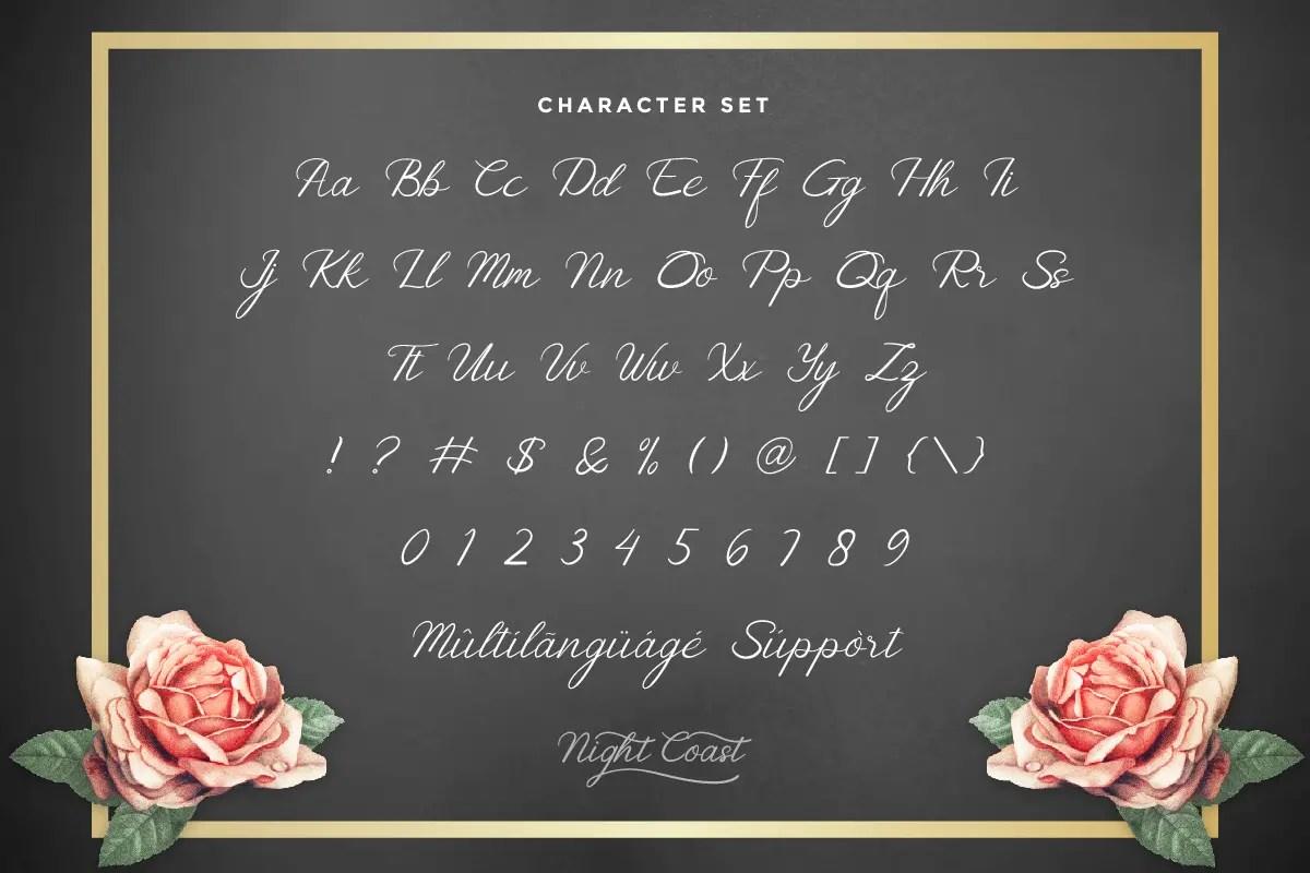 Nightcoast Beautiful Calligraphy Font -3