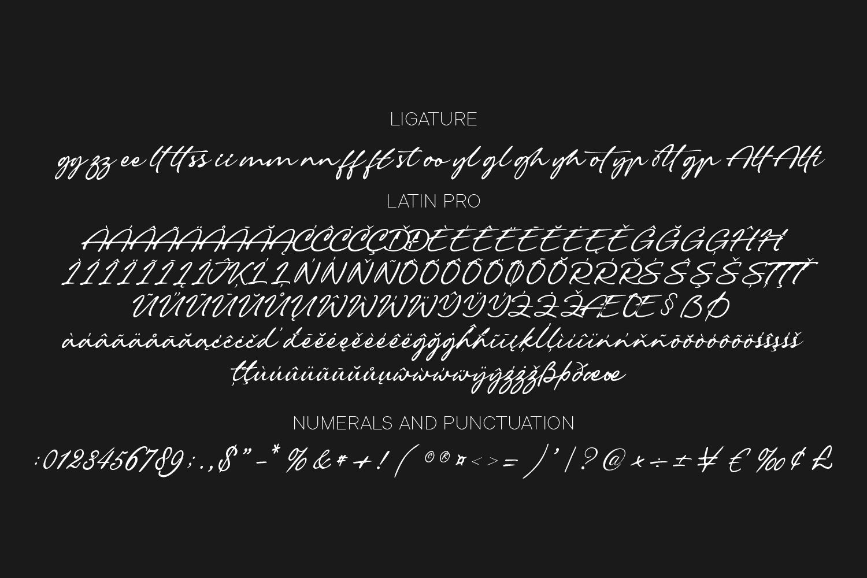 Reghina Script Calligraphy Font -3