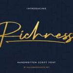 Richness Font
