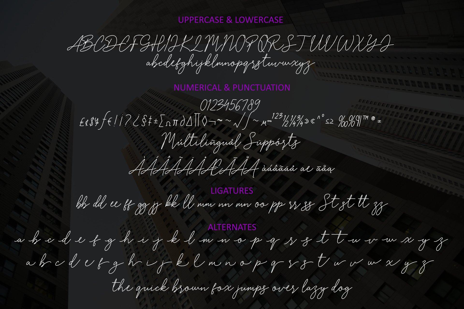 Rolling Bologna Modern Handwritten Font -3
