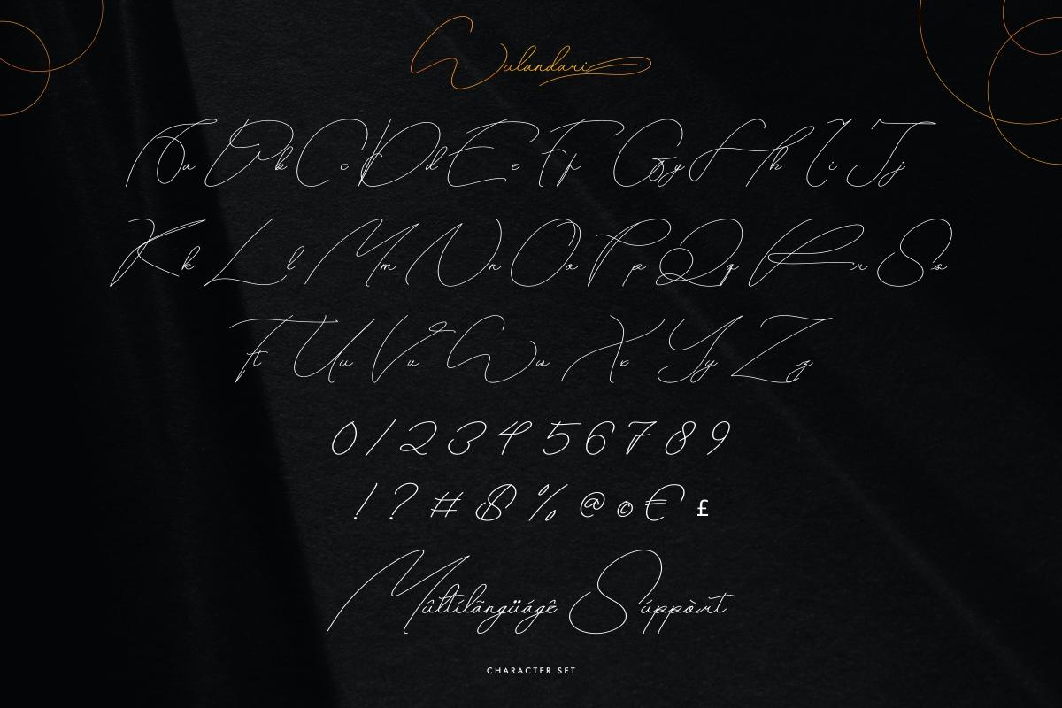 Wulandarisignature script Font -3