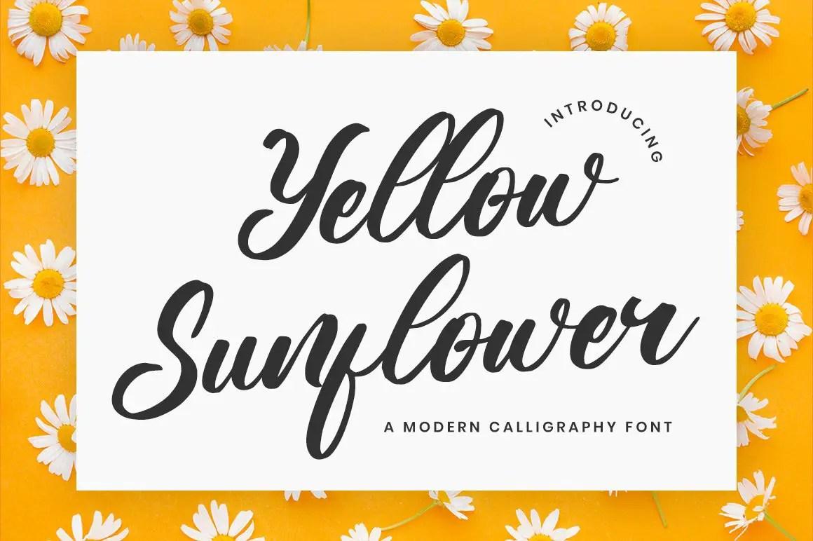 Yellow Sunflower calligraphy Font -1