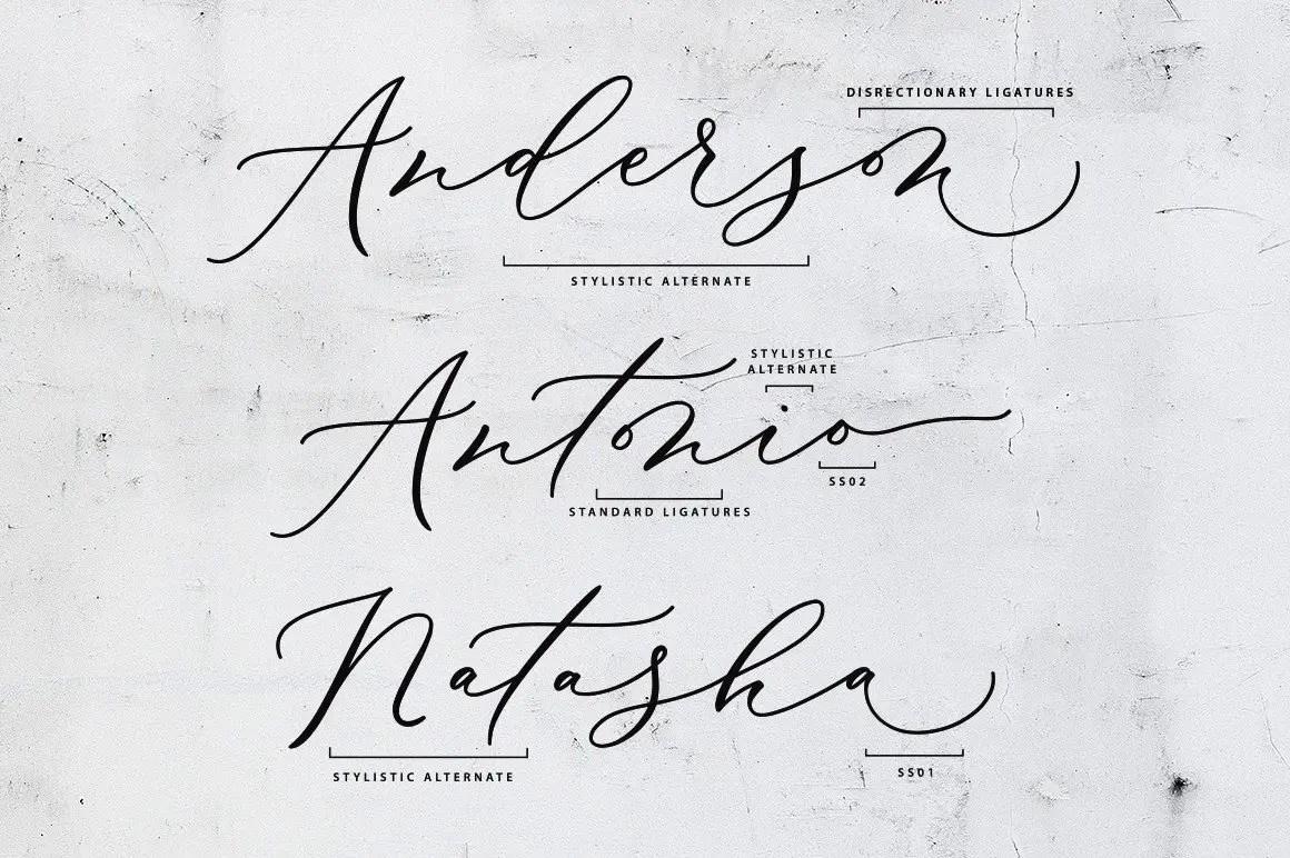 Biancha Elegant Script Font -3