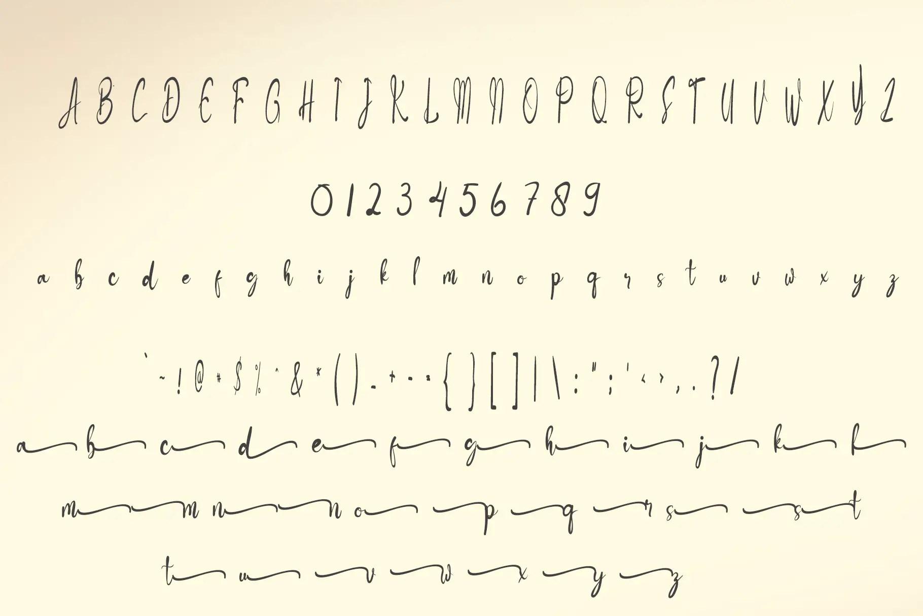 Butterfuul Calligraphy Script Font -3