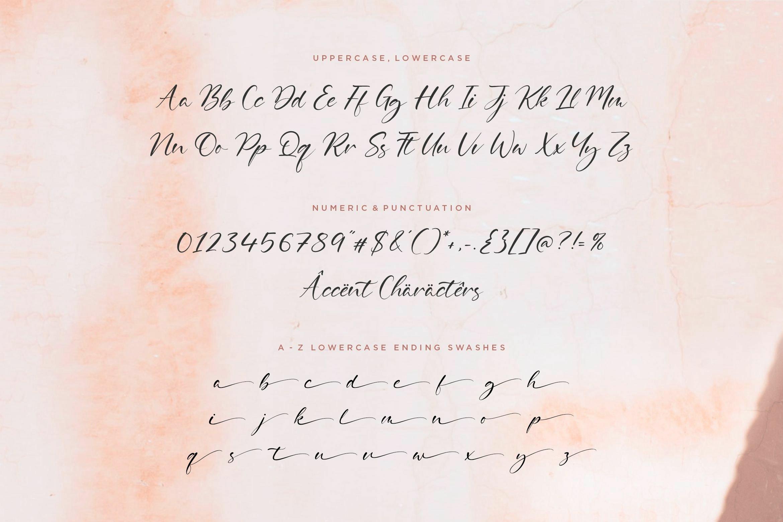 Delmona Modern Calligraphy Font -3