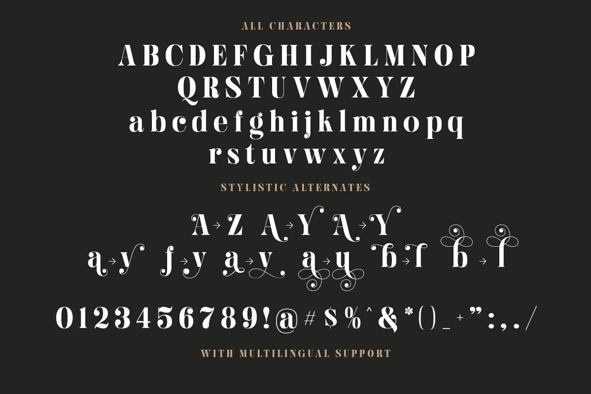 Hugiller Stylish Serif Font -3