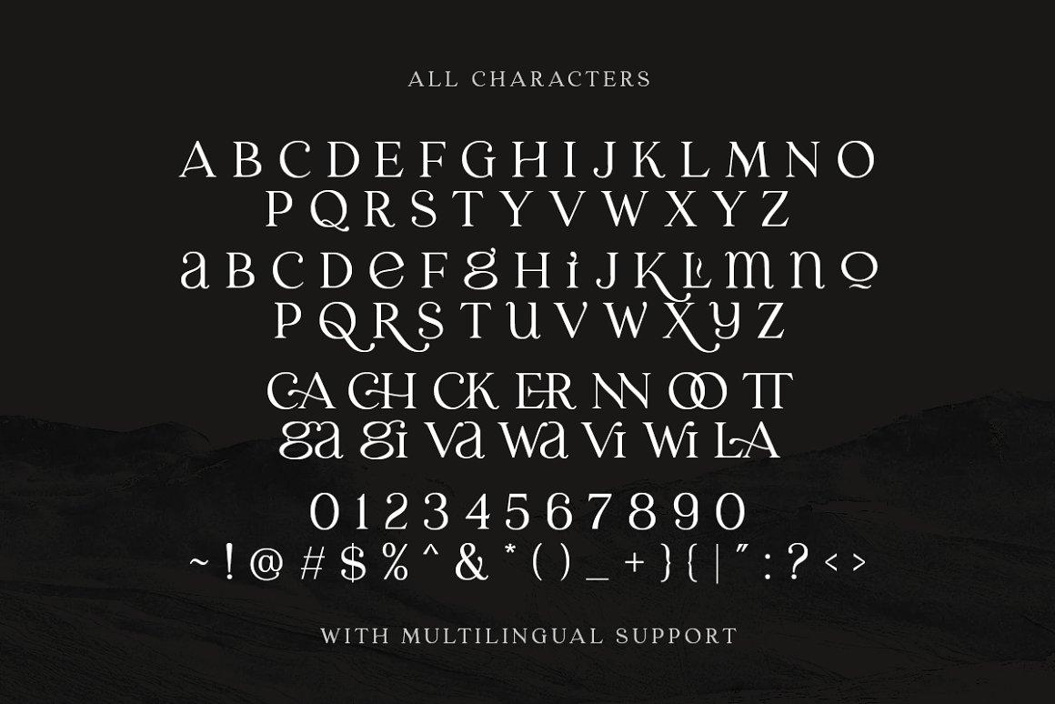 Laginchy Quirky Serif Font -3
