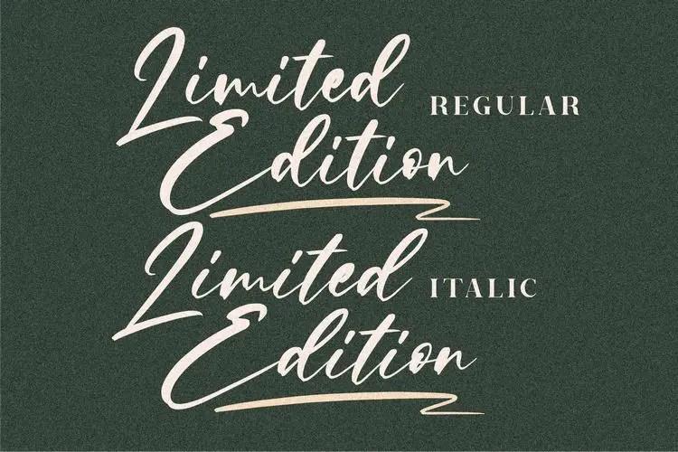 Limited Edition Signature Script Font -2