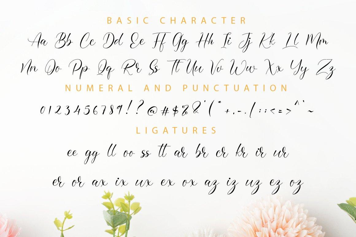 Omerlian Script Calligraphy Font -3