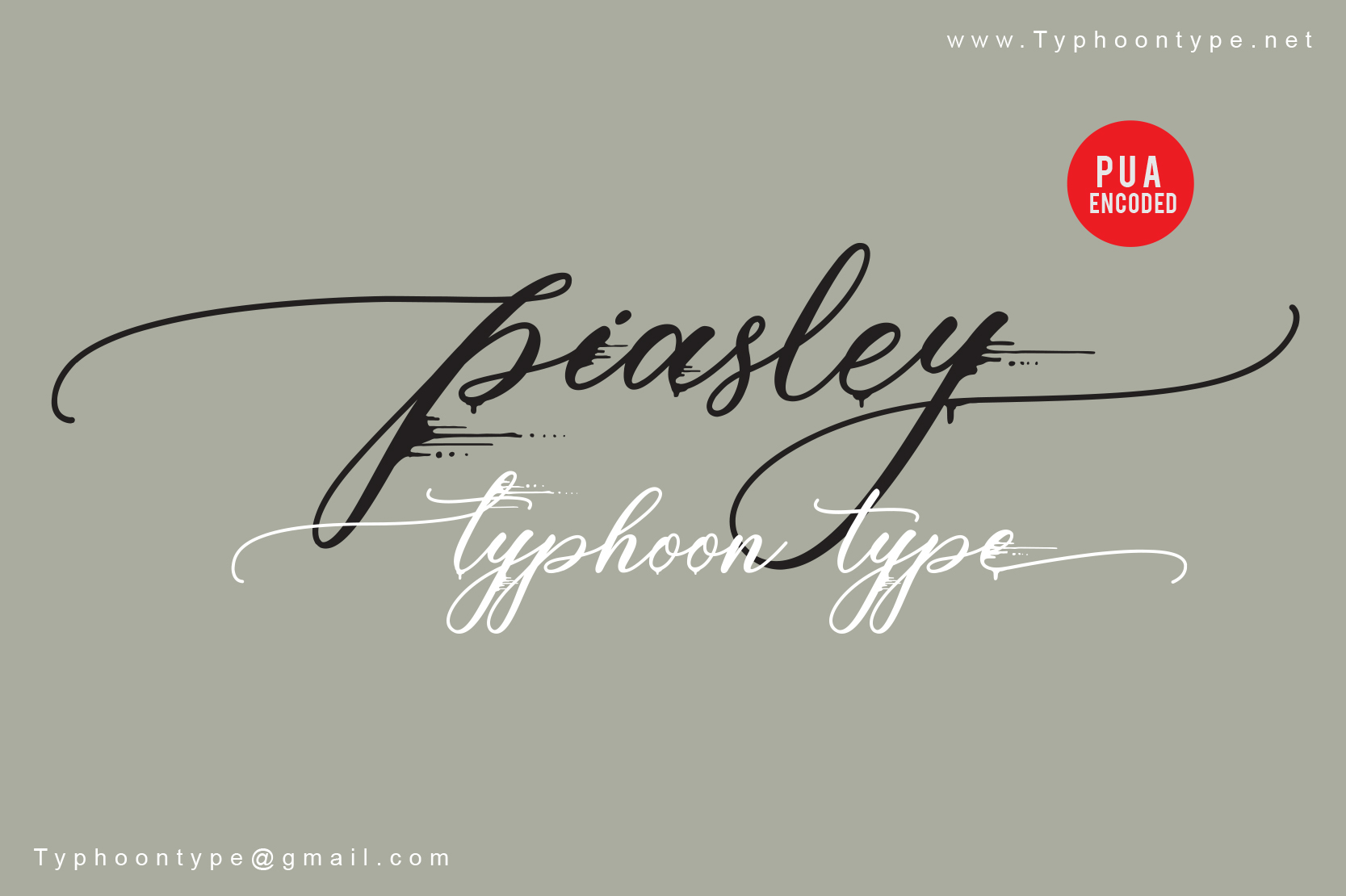 Piasley Script Calligraphy Font -1