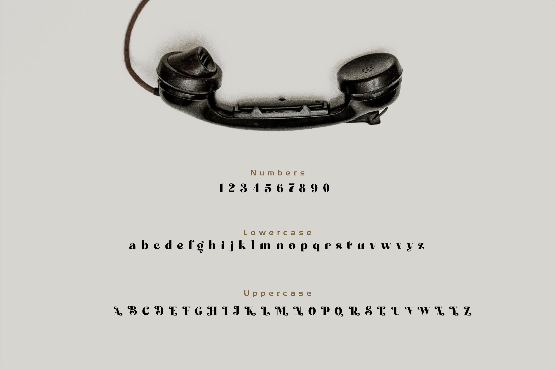 Bergato Serif Font -3