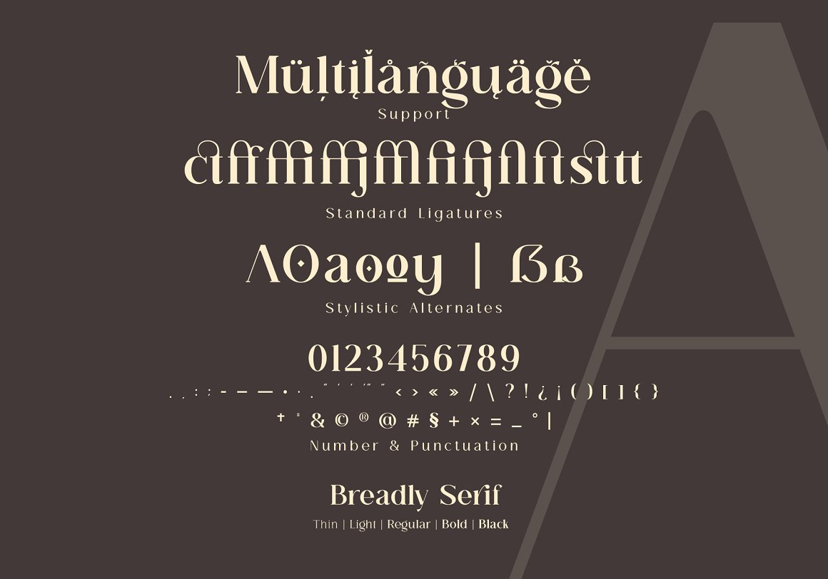 Breadley Serif Font -3