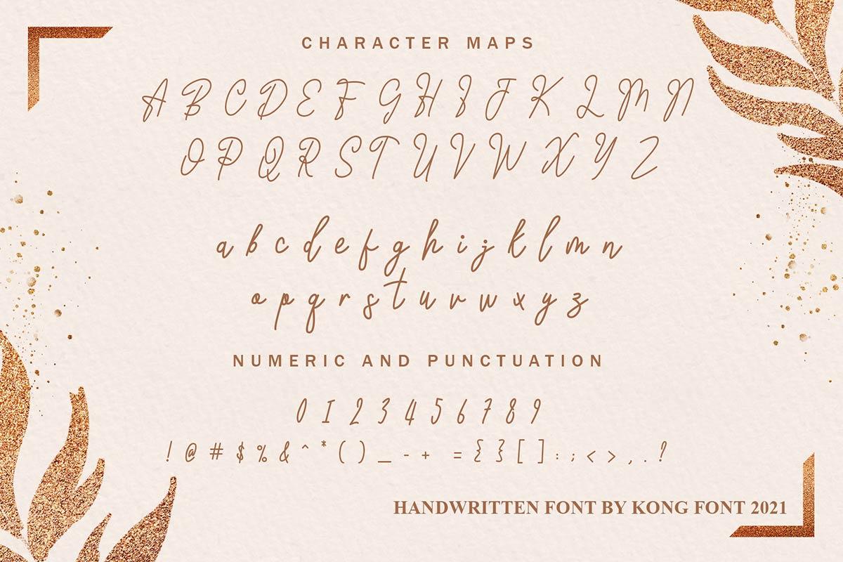 Michigan Handwritten Script Font -3