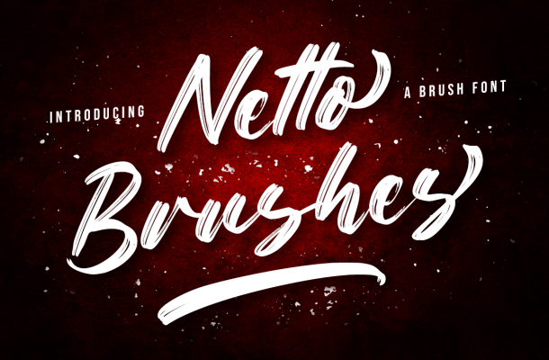 Netto Brushes Font