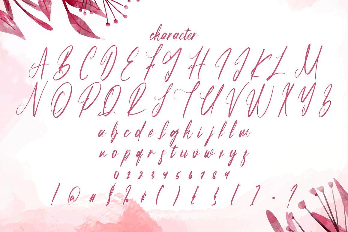 Partiny Agathi Handwritten Font -3