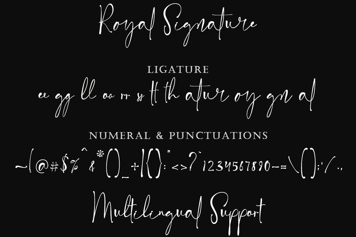Royal Signature Handwritten Font -3