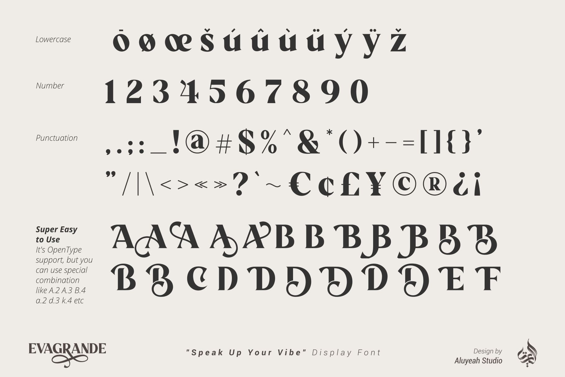 Evagrande Serif Font -3