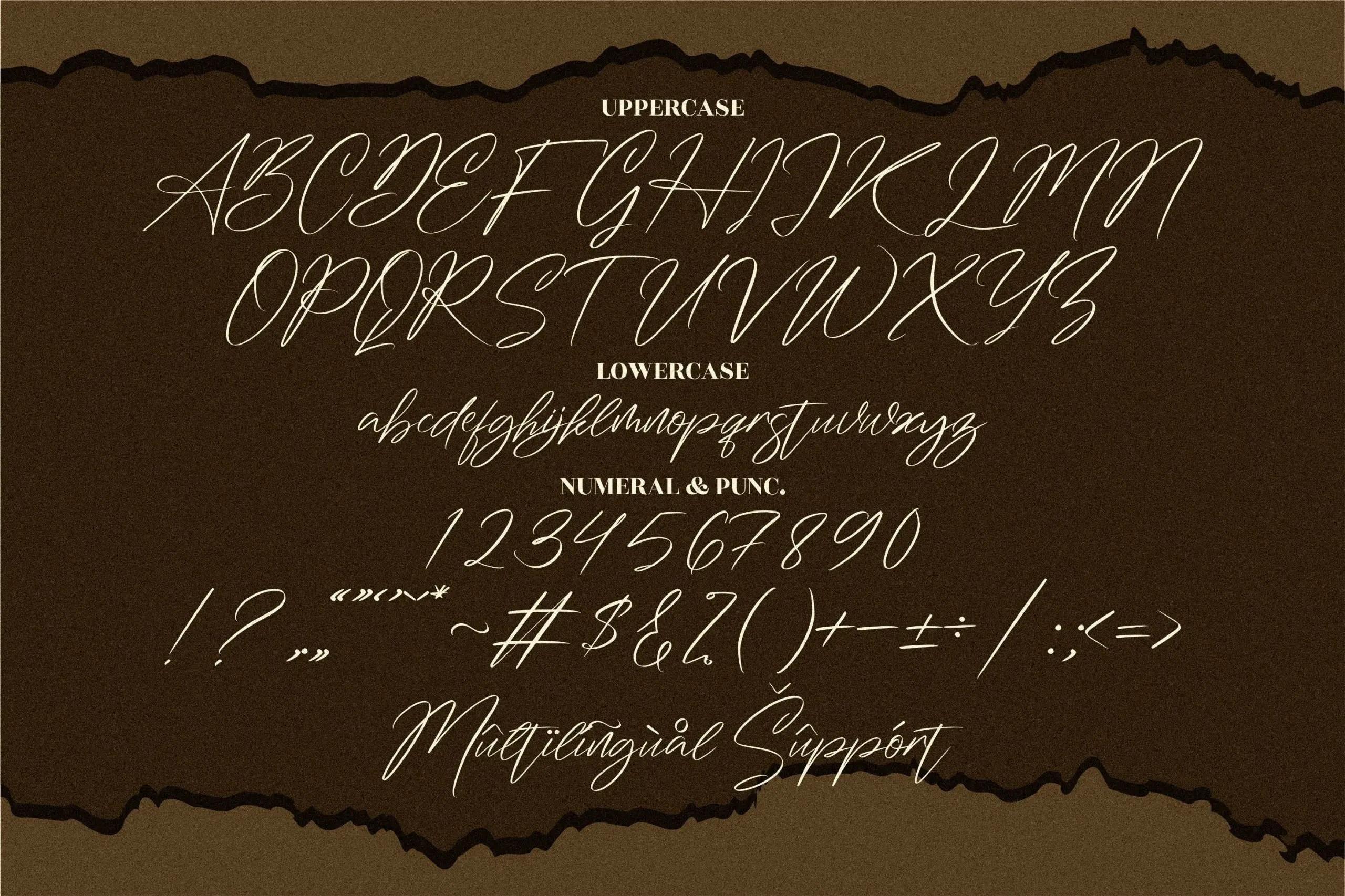 Washington Signature Script Font -3