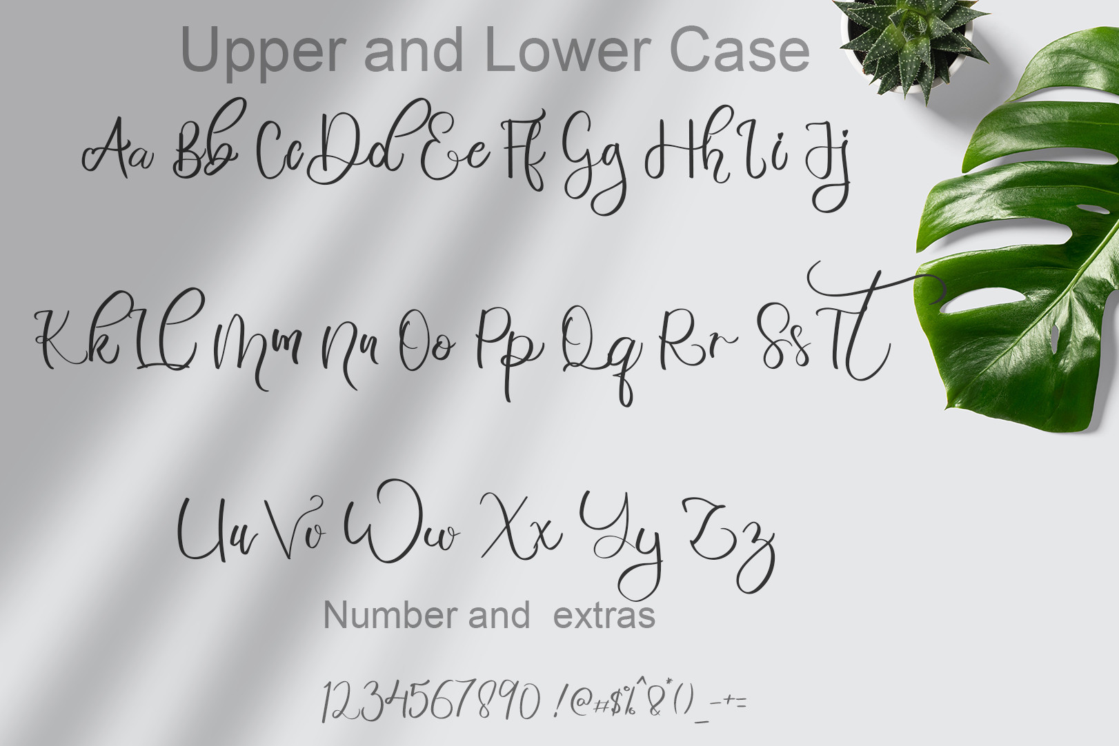 Bahagia Modern Calligraphy Font -3