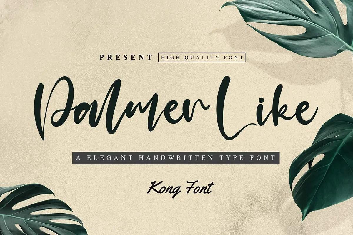 Palmer Like Handwritten Font -1