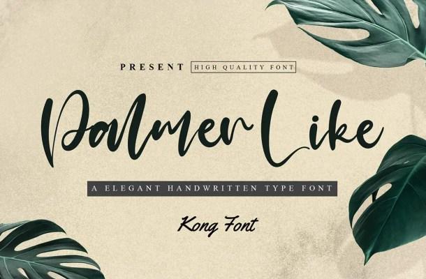 Palmer Like Font