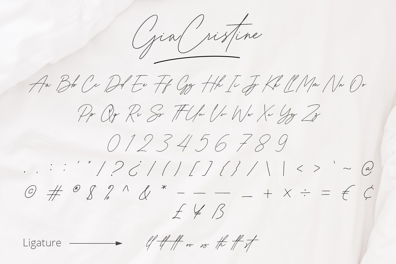 Gia Cristine Handwritten Font -3