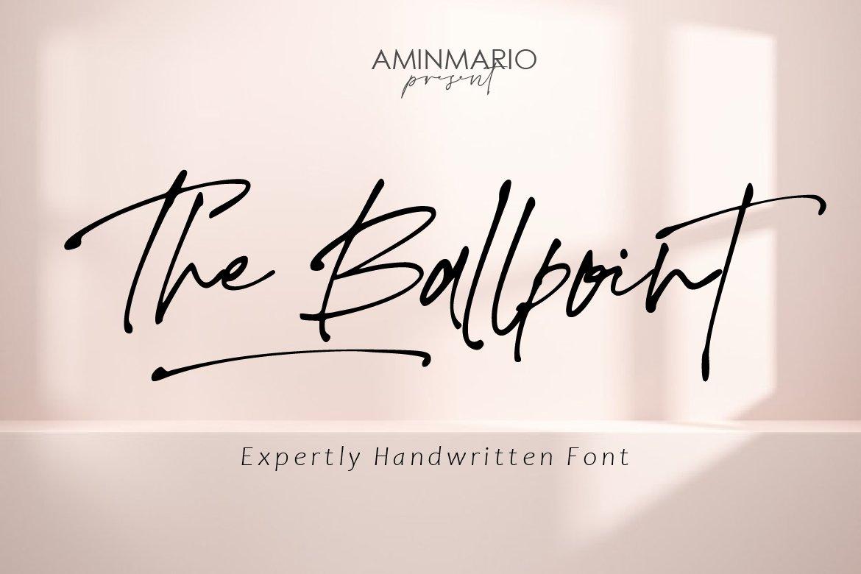 The Ballpoint Handwritten Font -1