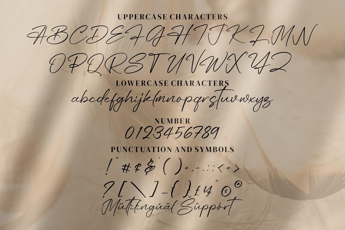 AngelinScript Calligraphy Font -3