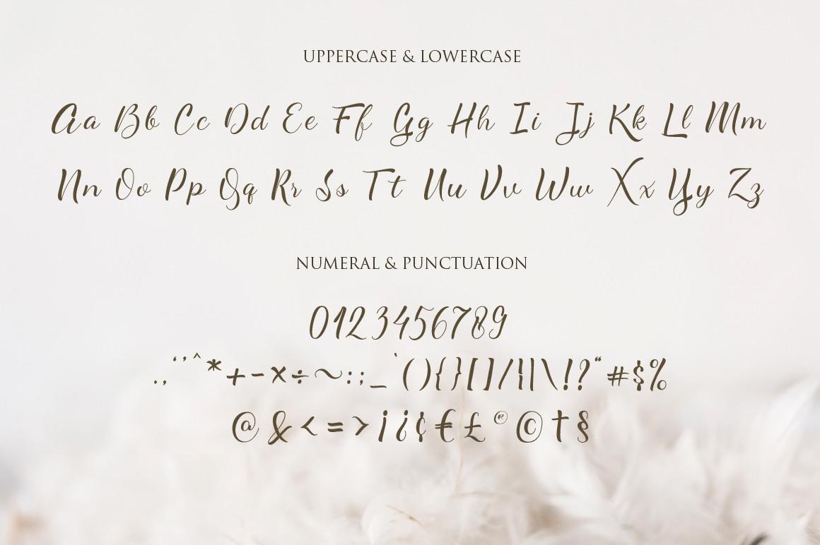 AlyanetaCalligraphy Script Font -3