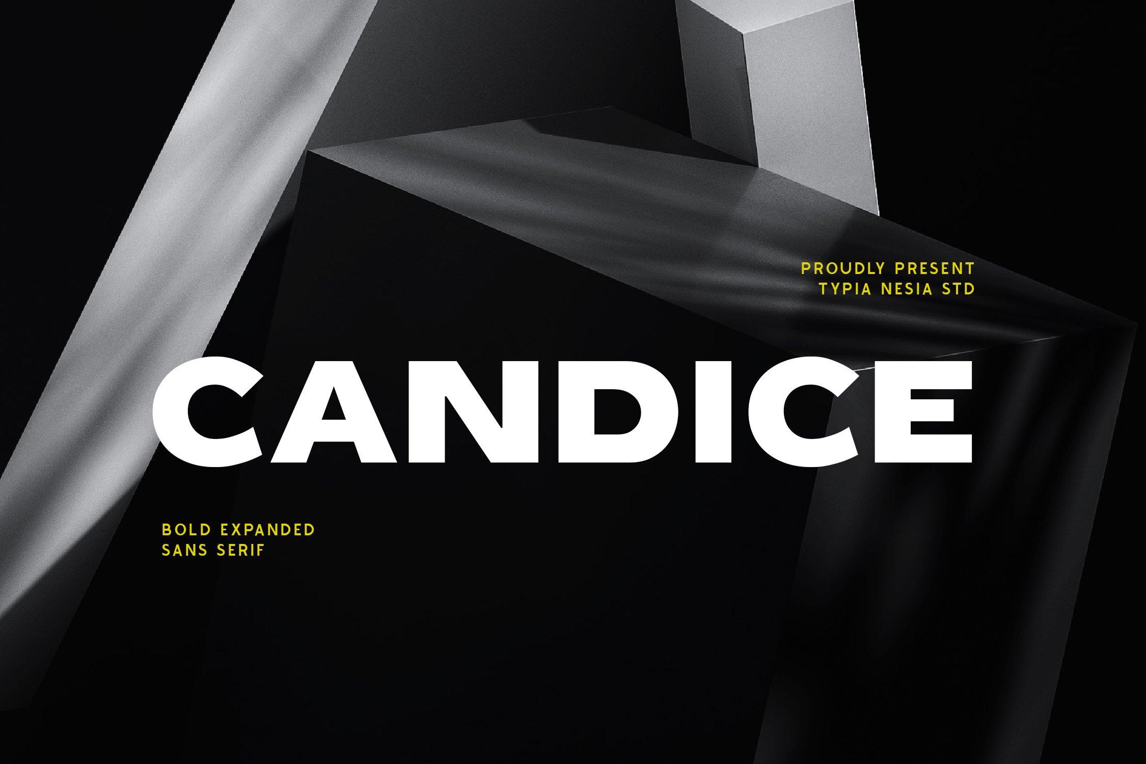 Candice Bold Sans Serif Font -1