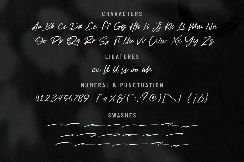 Drainwood Modern Brush Font -3