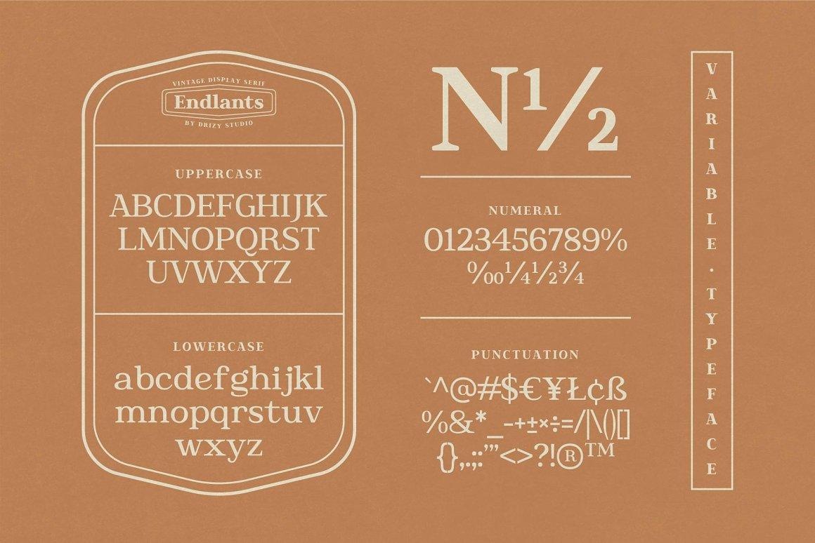 Endlants Serif Font Family -3