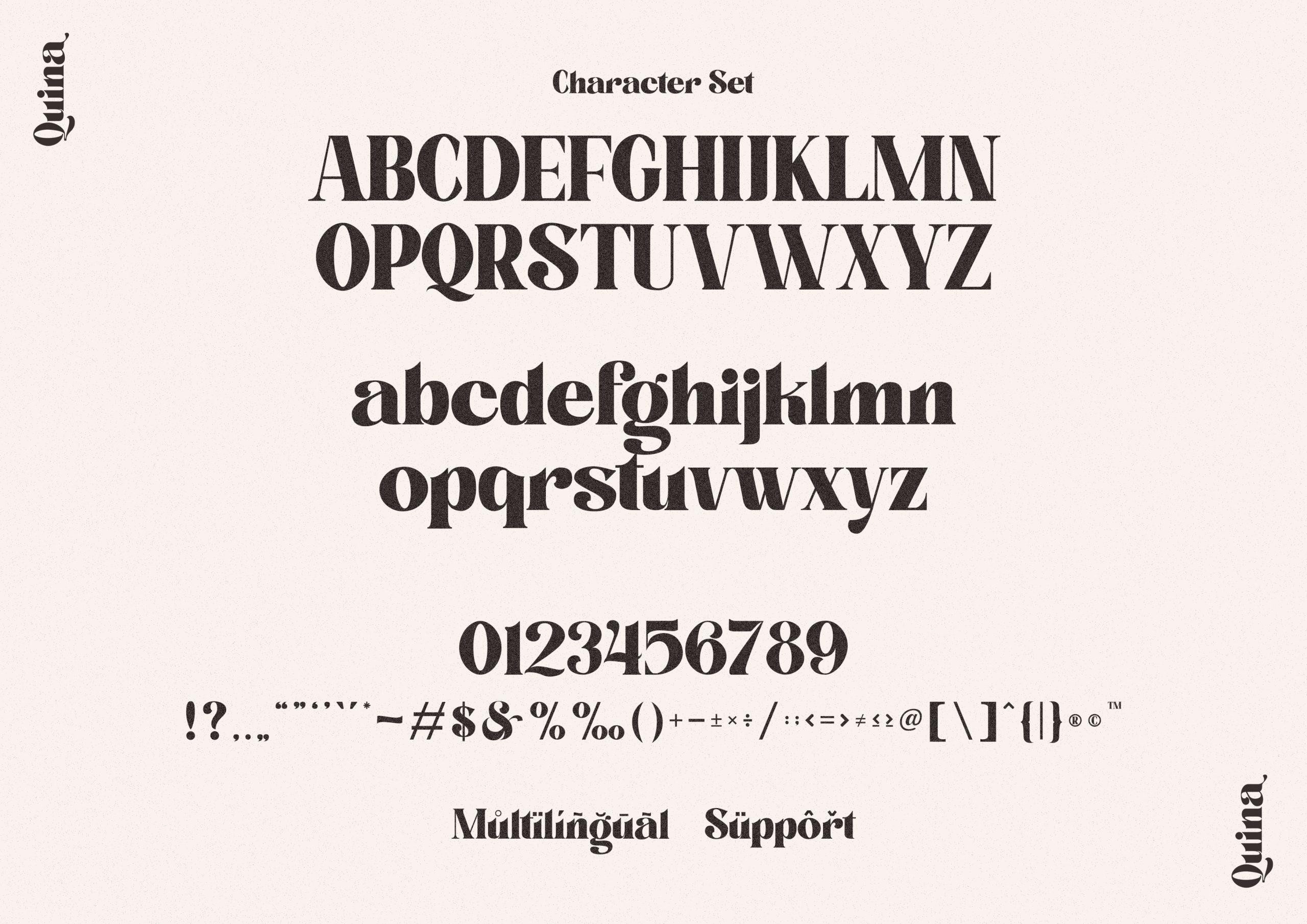 Quina Bold Serif Font -3