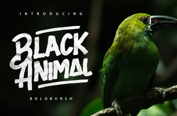 Black Animal Typeface