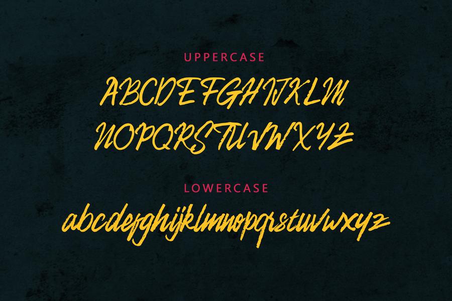 camellion-brush-font-1