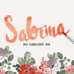 Sabrina Handmade Font Free