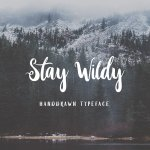Stay Wildy Script Font Free