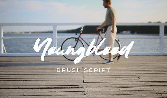 Youngblood Brush Font Free