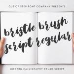 Bristle Brush Script Font Free