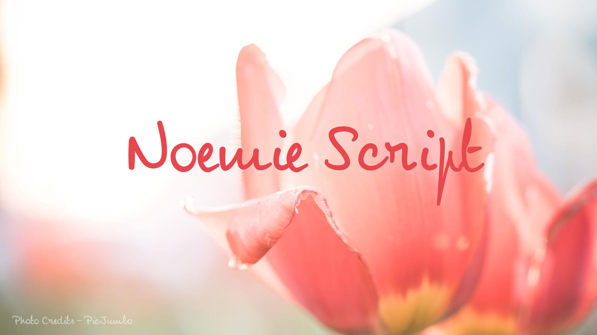 noemie-script-font