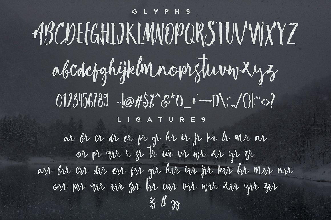 risoless-script-font