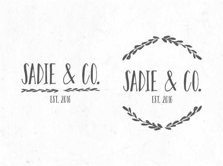 sadie-sans-font-1