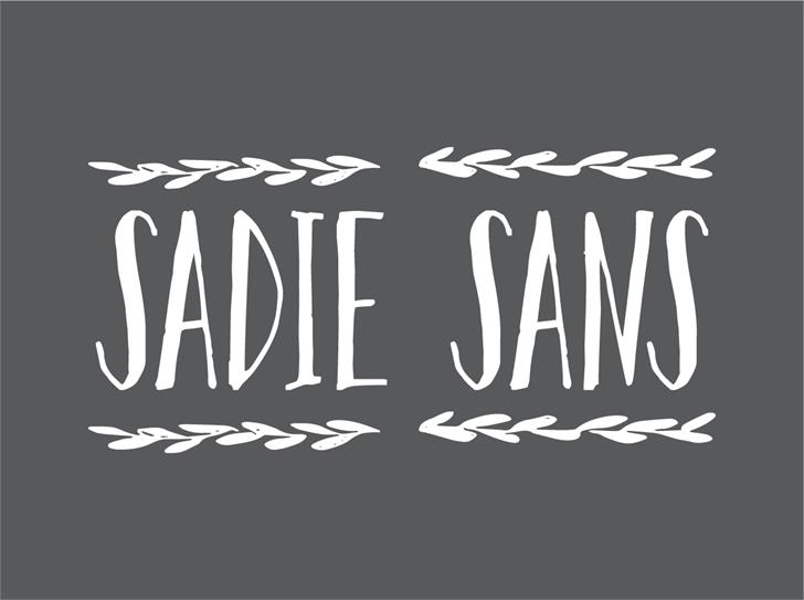 sadie-sans-font-created-in-2016-by-petrovivier