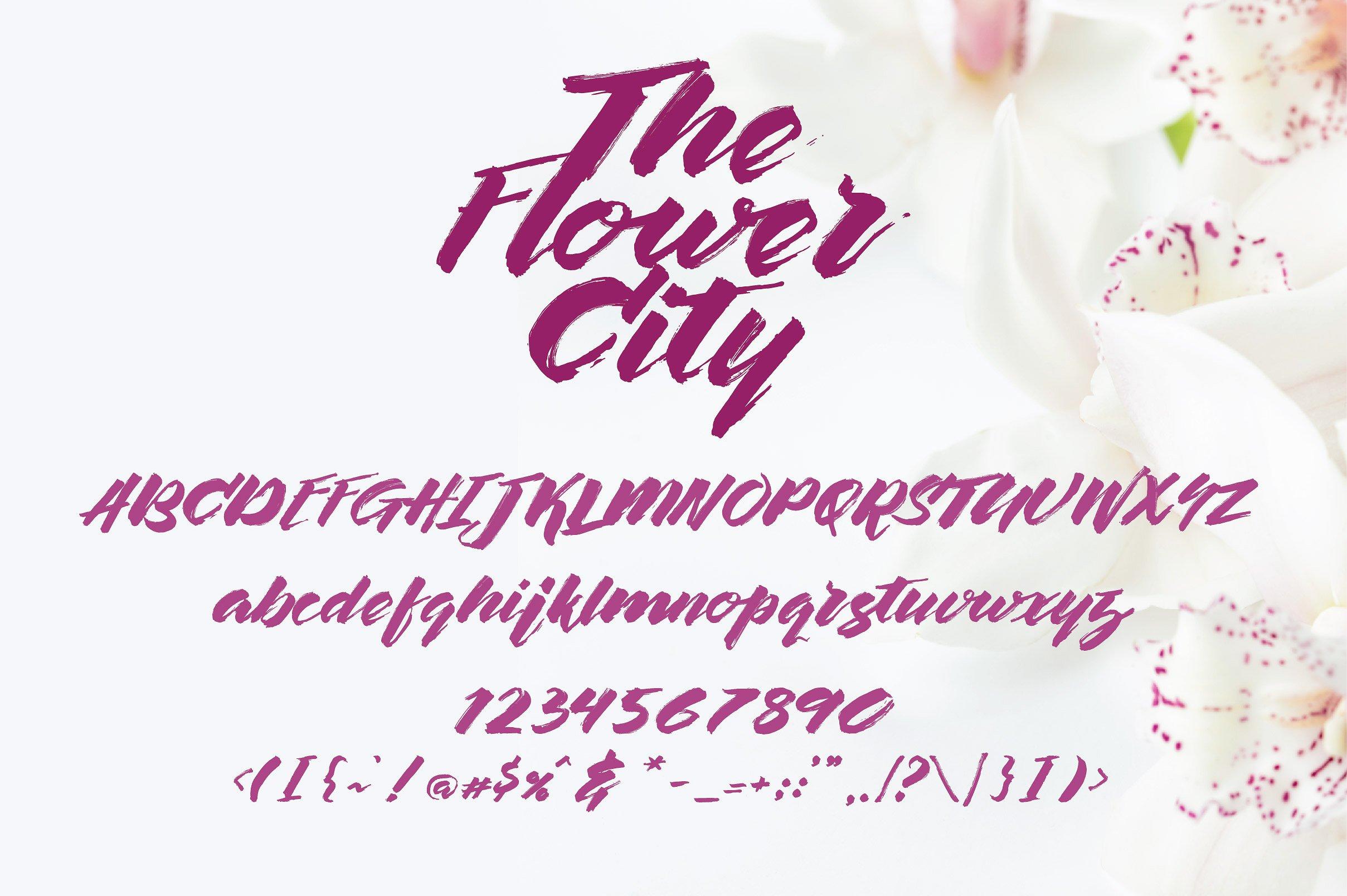 the-flower-city-script-font-2