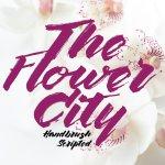 The Flower City Script Font Free