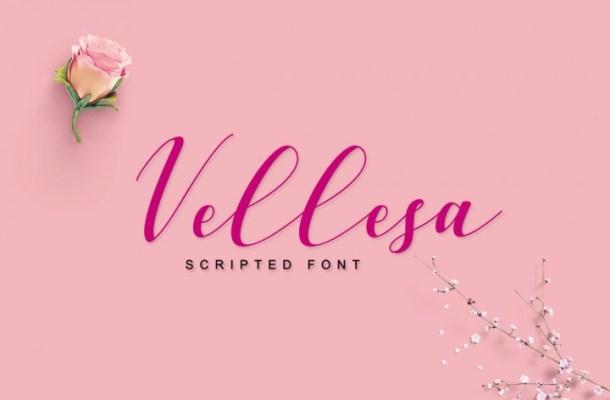 Vellesa Script Font Free